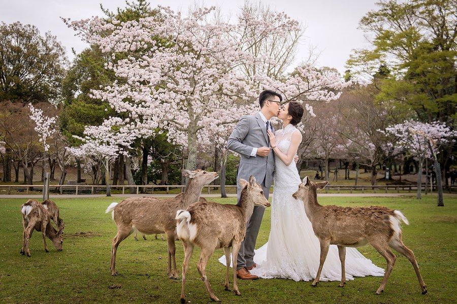 DSC_1229- 婚攝, 婚攝勇年,婚攝Yunis, 自助婚紗, 婚紗攝影, 婚攝推薦,婚紗攝影推薦, 孕婦寫真, 孕婦寫真推薦, 婚攝勇年, 台北婚攝, 孕婦寫真, 孕婦照, 台中婚禮紀錄, 婚禮攝影, 婚禮紀錄, 藝人婚禮, 自助婚紗, 婚紗攝影, 婚禮攝影推薦, 自助婚紗, 新生兒寫真, 海外婚禮攝影, 海島婚禮, 峇里島婚禮, 風雲20攝影師, 寒舍艾美婚禮攝影, 東方文華婚禮攝影, 君悅酒店婚禮攝影, 萬豪酒店婚禮攝影, ISPWP & WPPI, 國際婚禮, 台北婚攝, 台中婚攝, 高雄婚攝, 婚攝推薦, 自助婚紗, 自主婚紗, 新生兒寫真, 孕婦寫真, 孕婦照, 孕婦, 寫真, 台中婚攝, 藝人婚禮紀錄, 婚禮攝影, 台北婚禮紀錄, 藝人婚禮, 自助婚紗, 婚紗攝影, 婚禮攝影推薦, 孕婦寫真, 自助婚紗, 新生兒寫真, 海外婚禮攝影, 海島婚禮, 峇里島婚攝, 寒舍艾美婚攝, 東方文華婚攝, 君悅酒店婚攝, 萬豪酒店婚攝, 君品酒店婚攝, 世貿三三婚攝, 翡麗詩莊園婚攝, 翰品婚攝, 顏氏牧場婚攝, 晶華酒店婚攝, 林酒店婚攝, 君品婚攝, 君悅婚攝, 翡麗詩婚攝, 翡麗詩婚禮攝影